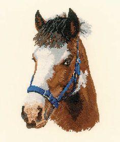 Horse Cross Stitch Kit - looks like a friends horse.