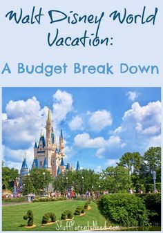 A real family talks real numbers and shows you exactly what they are spending on a Walt Disney World vacation.