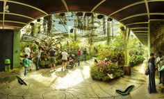 Penang Butterfly Farm by EDEMIN RAMIREZ viewfinder image production on 500px
