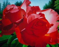 As Rosas de Brian Davis - Imagens de Flores