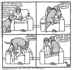 Winnie does this every day!