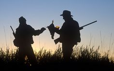 The future of grouse shooting and deer stalking hangs in the balance after tax   break scrapped, claim opponents of the move