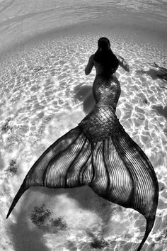 Maybe I would become a mermaid...I would live in the swirling blue-green currents, doing exotic underwater dances for the fish, kissed by sea anemones, caressed by seaweed shawls. My fingernails would be tiny shells and my skin would be like jade with light shining through it; I would never have to come back up.