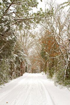 Alabama winter - This must be a joke!!