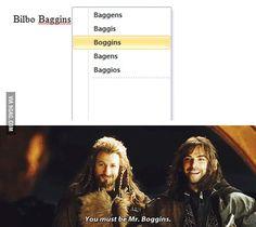 Mr. Boggins!