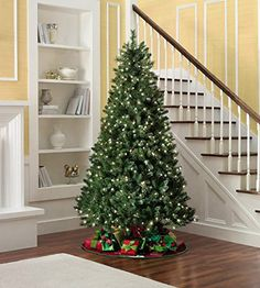 Virginia Pine 6.5 Foot Pre-Lit Artificial Christmas Tree: 1,000 Branch Tips, 500 Clear SureBright Lights, 3-Tone Color for Realistic Look [Free Holiday Music CD Included, & Free 2-Year Extended Warranty]
