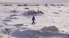 Vidéo de Petite Rivière St-François.  À voir Charlevoix Quebec, Mount Everest, Mountains, Nature, Travel, Saint Francis, Voyage, Viajes, Traveling
