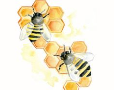 Items similar to Honey Bee Original Watercolor Painting Yellow Brown Black Honeycomb Gold Nature Insect 9 x 12 on Etsy Honeycomb Tattoo, Bee Honeycomb, Watercolor Print, Watercolor Paintings, Watercolours, Bee Drawing, Bee Painting, Bee Images, Bee Art