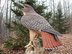 Bird Carvings Brad Wiley, Brad Wiley Bird Carvings Red-Tailed Hawk