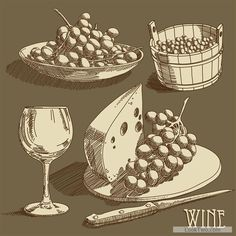 Retro hand drawn wine elements vector collection 07 free vector download