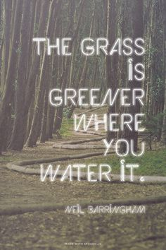 The grass is greener where you water it. - Neil Barringham  ...  #powerful #quotes #inspirational #words