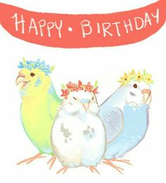 budgie party happy birthday time for ginsays! i squealed so much looking up references for this. Cute Animal Drawings, Animal Sketches, Bird Drawings, Cute Drawings, Funny Birds, Cute Birds, Animals And Pets, Cute Animals, Funny Parrots