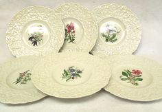 Royal Cauldon Woodstock Floral Plates Set of 6 Various