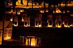 Light Zoo | Valoa Oulu! 2013 | Concept: Kaisa Salmi | Photo: All Rights reserved Jussi Tuokkola & Oulun kaupunki