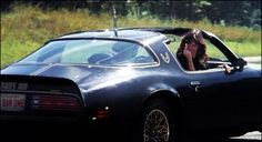 """I watched """"Smokey and the Bandit"""" last night. Swoon. 1977 Trans Am"""