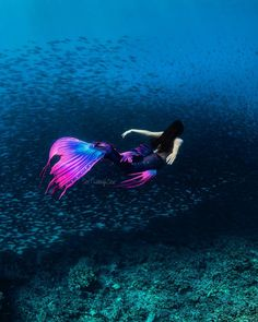 This tail was inspired by that moment just after the summer sun sets; when the sky lights up with fuchsia infused clouds and the deep… Mermaid Pose, Mermaid Swim Tail, Mermaid Swimming, Baby Mermaid, Mermaid Art, Mermaid Paintings, Real Mermaids, Mermaids And Mermen, Realistic Mermaid Tails