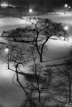 André Kertész | Washington Square, New York, 1954