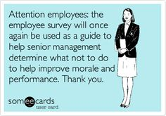 Attention employees: the employee survey will once again be used as a guide to help senior management determine what not to do to help improve morale and performance. Thank you.