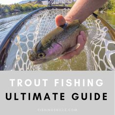 Trout Fishing: An In Depth How-To-Guide (Tips, Techniques & Tactics) - trout fishing guide - Trout Fishing Bait, Trout Fishing Tips, Fishing 101, Walleye Fishing, Fishing Guide, Sport Fishing, Fishing Humor, Carp Fishing, Best Fishing