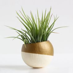 Pot of Air Planter in Gold