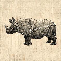 Vintage Art Rhino Print Rhinoceros Home Decor Antique Rhinooceros Print with Vintage Script Paper Background No.2640 B4 8x8 8x10 11x14 @ sparrowhouseprints.etsy.com