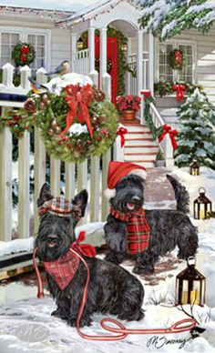 A Scottish Terrier Christmas  This is what I want for Christmas.  I have always wanted a Scottish Terrier.