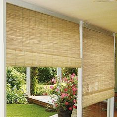 Radiance Reed Blinds in Natural | Wayfair