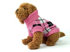 Barking this Pink and Black Argyle Knit Ribbed Dog Sweater features argyle pattern, comfy ribbed dog collar. This dog clothes feature a leash-slit holder. Knit Dog Sweater, Dog Sweaters, Dog Jumpers, Dog Wear, Leather Dog Collars, Friends Fashion, Dog Accessories, Black Knit, Pet Dogs