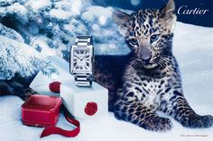 "Cartier introduces ""Winter Tale"""