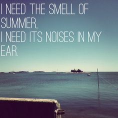 i need the smell of summer, i need it's noises in my ear