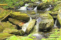 Teresa Johnson - Mountain Streams