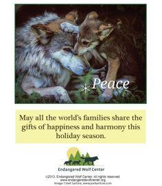www.endangeredwolfcenter.org
