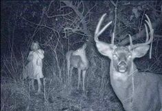 Vous garderez assurément ces photos en tête lors de votre prochaine balade en forêt…   Les chasseu...