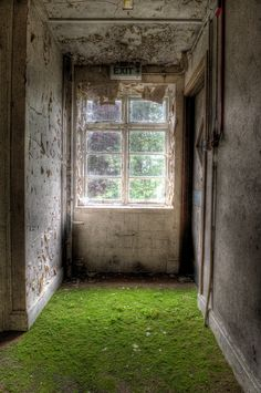 """""""Grass carpet, corridors at UE West Park Asylum. Damp,humid and the smell of fungi in the air. The hospital was slowly run down from the mid 1990's, and by 2003 most of the hospital was closed and derelict."""""""