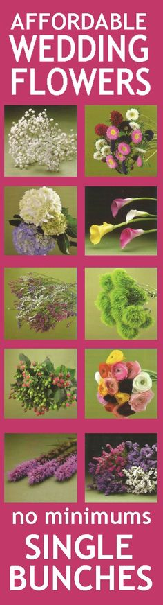 Calla Lily Wedding On Pinterest Florist Supplies Wedding Flowers