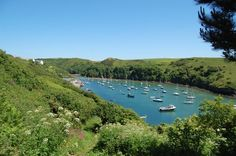 Harbour at Solva with boats on calm water trees and countryside surrounding