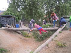 boomstamoversteek op de speelheuvel (another great log + ditch set-up)