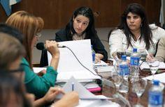 Se realizó una nueva reunión del Consejo Federal de las Mujeres La jornada tuvo lugar ayer en el salón Ramón Carrillo de la cartera social. Se abordó el Plan Nacional de Acción, el relevamiento de las áreas mujer municipales y los Hogares de Protección Integral.