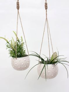The Enamel Hanging Planters in Cream are made entirely by hand using hammers to raise the surface of the lightweight enamelled iron. The dot design takes inspiration from the skin of a cactus. The organic jute string and subtle shades create a beautifully natural look, especially when paired with your favourite houseplants. Handmade in India in the Moradabad region of the country, a renowned center for skilled metalwork, we work with our enamel and metalwork artisans to continue to develop…