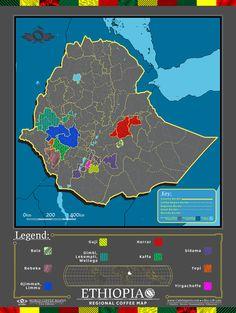 Cafe Imports   Ethiopia