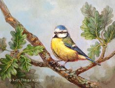Blue tit, small oil painting