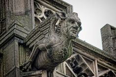 Manchester Cathedral Gargoyle Free Stock Photo - Public Domain ...