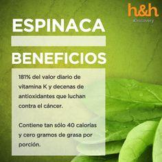 La espinaca, contiene mucha fibra y pocas calorías, por esta razón siempre tratamos de incluirla en nuestra dieta, pero ¿sabías que también presenta grandes cantidades de provitamina A, vitaminas C y E? Todas de acción antioxidante - MEDICO HOMEOPATA IRIOLOGO, ACUPUNTURA, FLORES de BACH, PSICOTERAPIA DINAMICA - Calle SIMON BOLIVAR 397- CORDOBA -Capital- Argentina - Tel. (0351) 421 0847