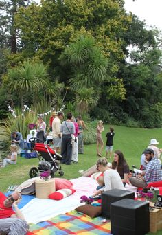 30th Birthday picnic ... Love the blanket-scape with cushions & such