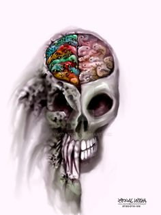 Best HD Left Brain Right Brain Wallpapers 910×1024 Left Brain Right Brain Wallpapers (30 Wallpapers) | Adorable Wallpapers