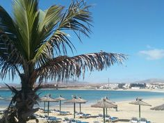 Fuerteventura, caleta de fuste