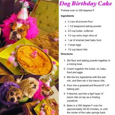 Cheap And Easy Dog Birthday Cake Recipe Not Yum For Me But I Bet