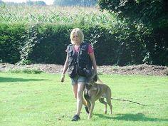 Hundetraining Unterordnung Basistraining