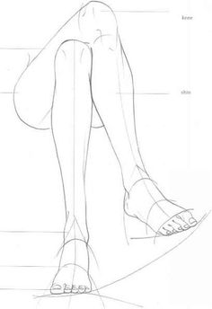Figure Leg Structure Drawings