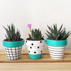 Shop online for all your Cactus and Succulent must haves. Painted Plant Pots, Painted Flower Pots, Flower Pot Crafts, Clay Pot Crafts, Pots D'argile, Small Flower Pots, Flower Pot People, Flower Pot Design, Fleurs Diy